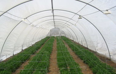 China High Efficiency Insect Fly Screen Mesh / Insect Wire Mesh For Greenhouse supplier