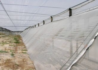 Monofilament Mosquito Net Screen Fine Mesh , Customized Fly Screen Netting