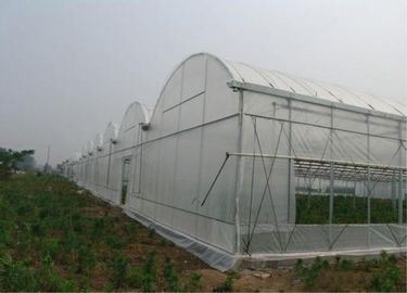 Greenhouses And Tunnels Insect Mesh Netting Plain Weave 0.3mm Wire Diameter