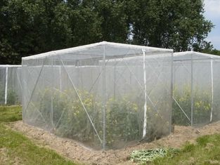 Customized Size Insect Fly Screen Mesh , Anti Hail Netting Fabric ISO9001 Listed