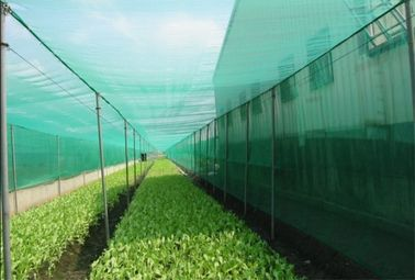 China Professional Insect Mesh Netting , Durable Outdoor Mosquito Netting factory