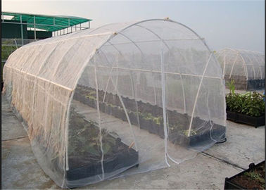 China High Efficacy 80gsm Lightweight Insect Window Net 30 Mesh 3m Width factory