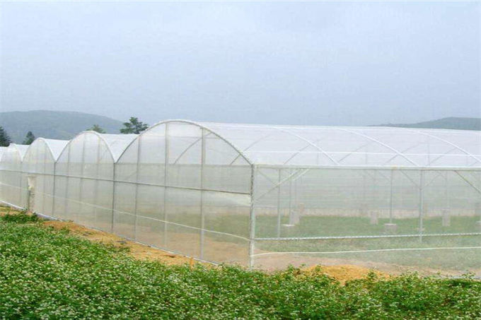 Width Customized Garden Insect Netting 100% New Original HDPE Materials